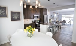 Modern Kitchen - Westcoast show home
